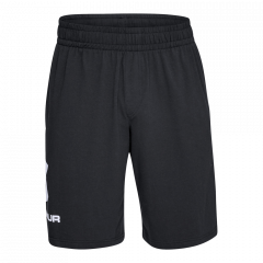 Under Armour Graph Sw Shorts - Herre Shorts
