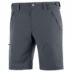 Salomon Wayfarer Shorts - Herren Shorts